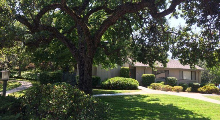 El Sombroso Oaks