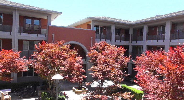 The courtyard at Jennings Court with trees with red leaves.