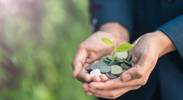hands holding coins with a small green plant growing out of it